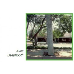 Paroi guide racines - TREE ROOT GUIDE